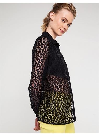 Love'n Fashion Paris Şifon Gömlek